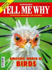 TELL ME WHY Magazine Subscription