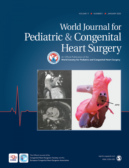 World Journal for Pediatric and Congenital Heart Surgery Journal Subscription